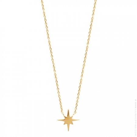 Gold platted star necklace