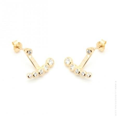 5 strass gold platted earrings