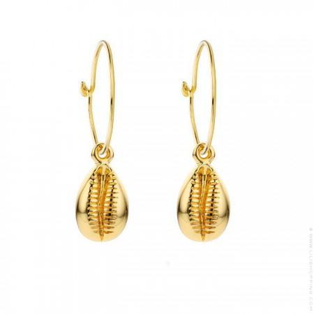 Cauris gold platted earrings