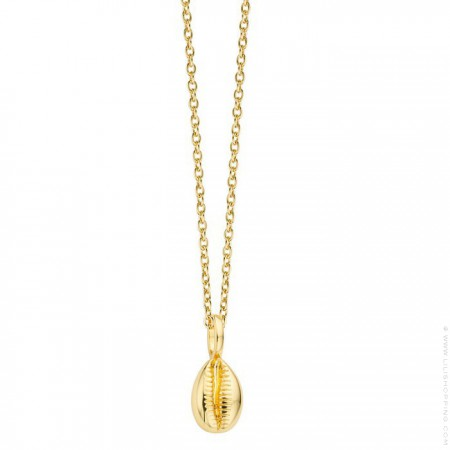 Cauri shell Gold platted necklace
