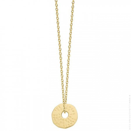 Gold plated Declaration necklace