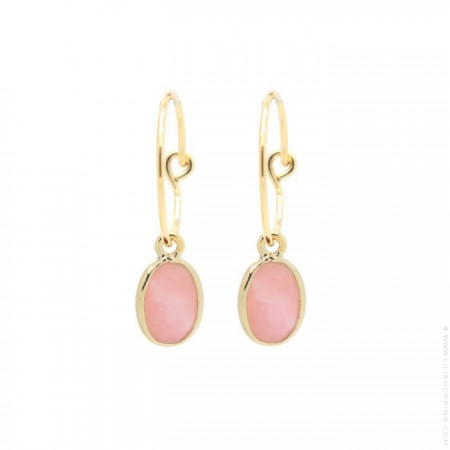 Gold plated mini hoops earrings with