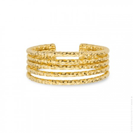 Amazonia gold Plated Ring