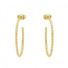 Gold platted Amazonia hoop earrings