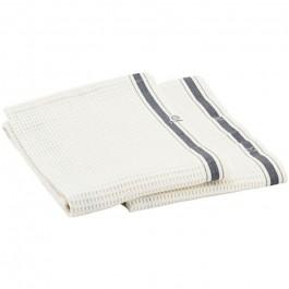Set of 2 Bihar tea towels