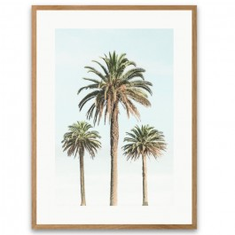 Affiche encadrée 3 palmiers vintage