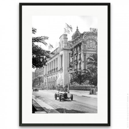 Black and white architectural palmtrees framed poster